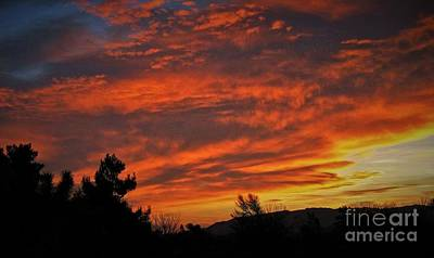 Photograph - High Desert Sunrise by Angela J Wright