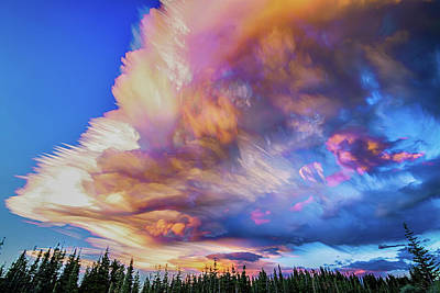 Photograph - High Elevation Forest Sunset Sky Timed Stack by James BO Insogna