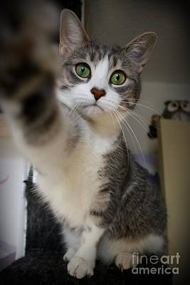 Photograph - High Five by Heather King