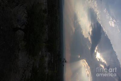 Photograph - High Flier by Brian Boyle