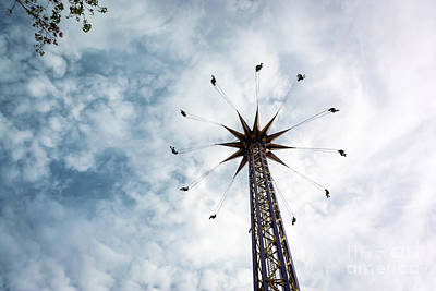 Photograph - High Flying by Wayne Wilton