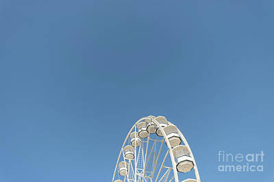 Photograph - High In The Blue Sky 1 by Steve Purnell