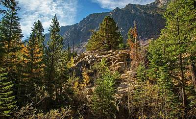 Photograph - High In The High Sierra by Lynn Bauer