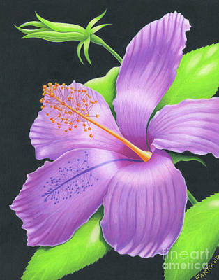 Wall Art - Painting - High Noon Hibiscus by Tracy Farrand