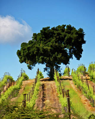Vineyard Digital Art - High On The Hill by Patricia Stalter