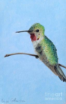 Iridescent Drawing - High Perch by Monique Castellani-Kraan