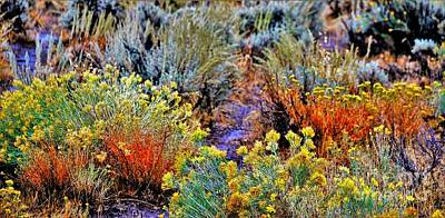 Blue Hues - High Plateau by Merle Grenz