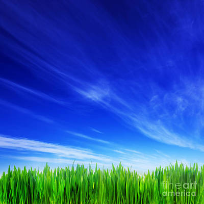 Grow Photograph - High Resolution Image Of Fresh Green Grass And Blue Sky by Michal Bednarek