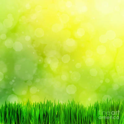 Square Photograph - High Resolution Image Of Fresh Green Grass On Nature Blur by Michal Bednarek