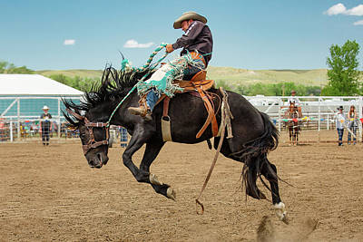 Quarter Horses Photograph - High Ride by Todd Klassy