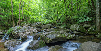 Photograph - High Shoals Falls Trail In South Mountain Panorama by Ranjay Mitra