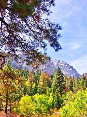 Photograph - High Sierra by Marilyn Diaz