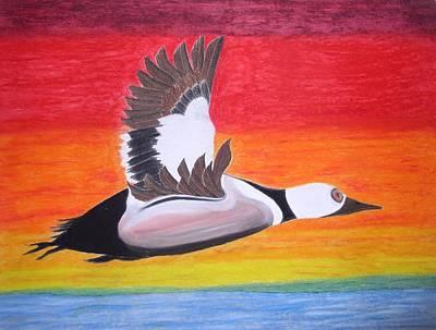 High Sped Duck Art Print