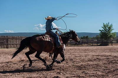 High Speed Photograph - High Speed Cowboy Roping by Steve Gadomski