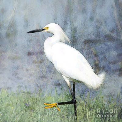 Egret Digital Art - High Stepping by Betty LaRue