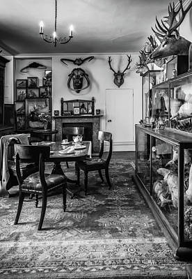 Photograph - High Tea by Nick Bywater