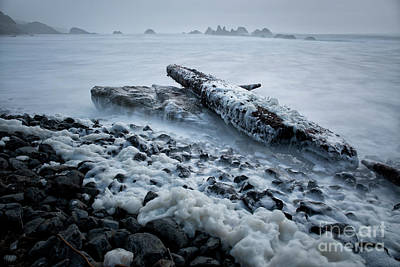 Driftwood Beach Fog Wall Art - Photograph - high tide at Seal Rock State Park  by Masako Metz