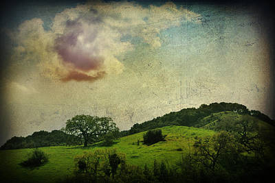 Landscapes Photograph - Higher Love by Laurie Search