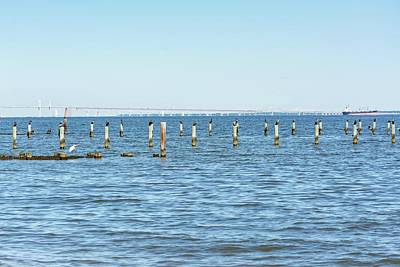 Photograph - Highland Beach On The Chesapeake by Charles Kraus