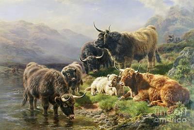 Fresh Water Painting - Highland Cattle by William Watson