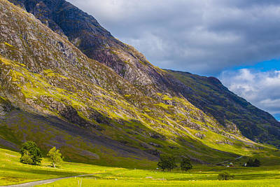 Photograph - Highland Hillside by Steven Ainsworth