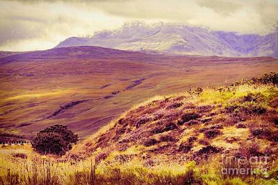 Photograph - Highland Landscape by Diane Macdonald