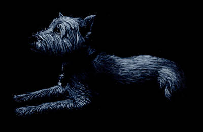 Highland Terrier Art Print