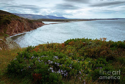 Photograph - Highlands Of Cape Breton by Nancy Dempsey