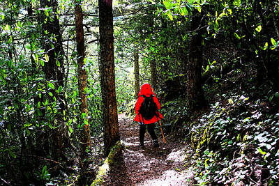 Photograph - Hiker In Red by Marie Jamieson