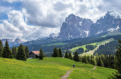Photograph - Hiking In Alpe Di Siusi by Carolyn Derstine