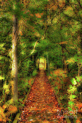 Digital Art - Hiking In Paradise - West Virginia Ap by Dan Carmichael