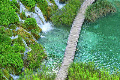 Photograph - Hiking Path In Plitvice National Park Croatia by Brandon Bourdages