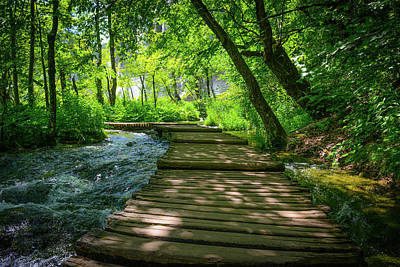 Photograph - Hiking Path On A Wooden Trail by Brandon Bourdages