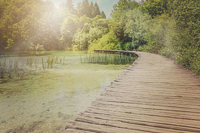 Vintage River Scenes Photograph - Hiking Path With Vintage Filter by Brandon Bourdages