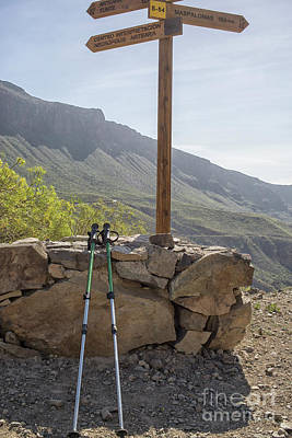 Photograph - Hiking Poles Resting Near Sign by Patricia Hofmeester