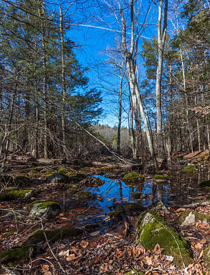 Photograph - Hiking Reflections At Wompatuck State Park by Brian MacLean