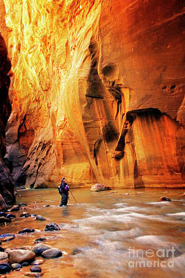 Photograph - Hiking The Narrows by Scott Kemper
