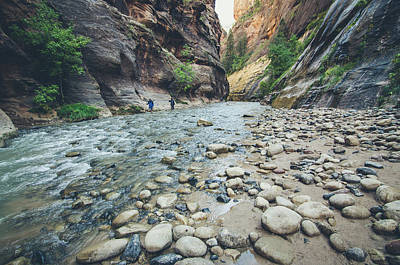 Photograph - Hiking The Virgin River by Margaret Pitcher