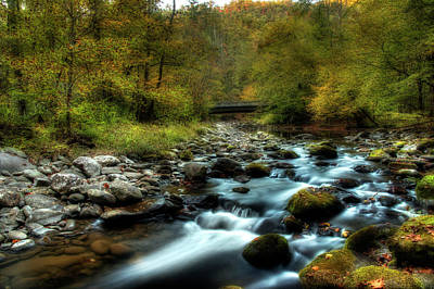 Photograph - Hiking Through Autumn by Mike Eingle