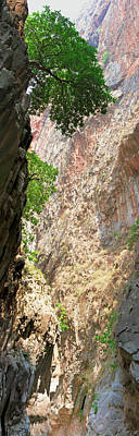 Photograph - Hiking Through The Gorge Of Saklikent by Sun Travels