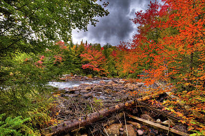 Photograph - Hiking To Indian Rapids by David Patterson