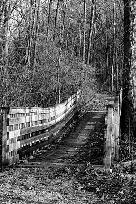 Photograph - Hiking Trail Bridge 120217 Bw by Mary Bedy