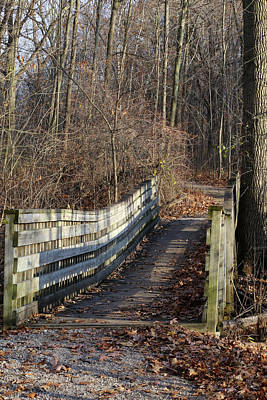 Photograph - Hiking Trail Bridge 120217 by Mary Bedy