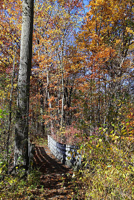 Photograph - Hiking Trail Bridge In Fall 10 by Mary Bedy