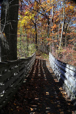 Photograph - Hiking Trail Bridge In Fall 11 by Mary Bedy
