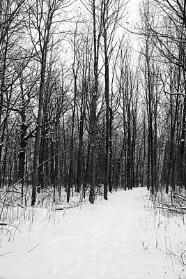 Photograph - Hiking Trail Snow Storm 021018 Bw by Mary Bedy