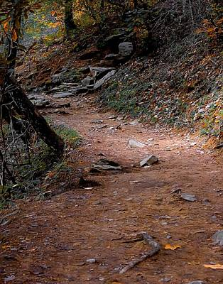 Hiking Trail To Abrams Falls Art Print by DigiArt Diaries by Vicky B Fuller