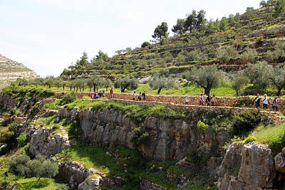 Photograph - Hiking Trip To Battir by Munir Alawi