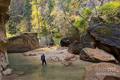 Photograph - Hiking, Zion National Park by Howie Garber