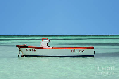Photograph - Hilda by Judy Wolinsky